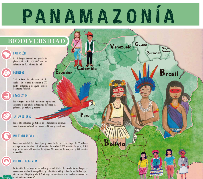 imagen-infografia-red-panamazonica.png